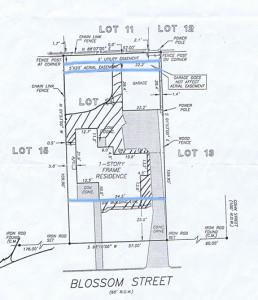 surveyweb